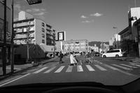 逆光の午後 - カメラノチカラ