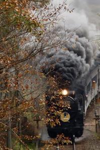 SLやまぐち秋を探して - 蒸気屋が贈る日々の写真-exciteVer