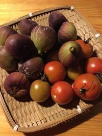 嬉しい収穫 - あこば