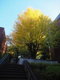 上野の秋 - 絵を描きながら