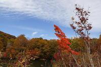 小谷村鎌池の紅葉その3 - 日本あちこち撮り歩記