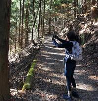 【三頭山】1531m - 山登り系 KADHAL