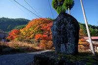 2020京都の紅葉・杉坂地蔵院 - デジタルな鍛冶屋の写真歩記