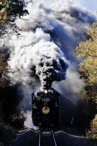SLやまぐち煙の舞 - 蒸気屋が贈る日々の写真-exciteVer
