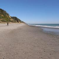 11月の南風・青物漂着 - Beachcomber's Logbook