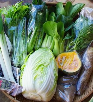 今週の野菜セット(11/24~11/28着) - キシノウエンの 今日のてしごと