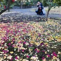 秋の中に^_^ - ~おざなりholiday's^^v~ <フィルムカメラの写真のブログ>