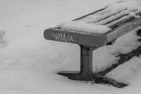 冬の始まりの早すぎる夕べに - SCENE