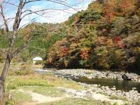 『紅葉散策の旅(道の駅・清流の里しろとり~駒ヶ滝)』 - 自然風の自然風だより