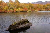 小谷村鎌池の紅葉その4 - 日本あちこち撮り歩記