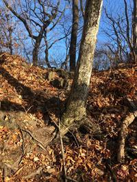 大倉山の4つ謎その1を解く - 七ツ森アーカイブ