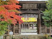 紅葉 18京都府 - ty4834 四季の写真Ⅱ