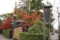 紅葉の寺へ - 写真の記憶