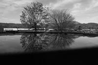 秋を映す - 旅する       memephoto
