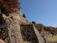 上田城跡公園の紅葉(1) (2020/11/13撮影) - toshiさんのお気楽ブログ