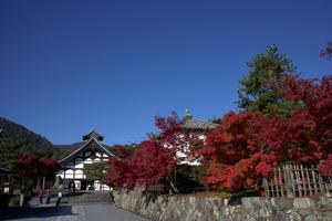 秋を求めて天龍寺 -