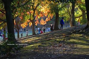 秋を楽しむ一日 -