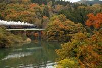 深まる秋を旅して - 蒸気屋が贈る日々の写真-exciteVer
