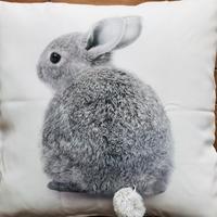 【もうダメになりそうなほど可愛いウサギの麦ちゃん】ユーチューブおススメ - お散歩アルバム・・静かな睦月