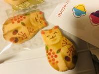 【ねこクッキーとね紅茶】ねこにすと - お散歩アルバム・・紫陽花の頃