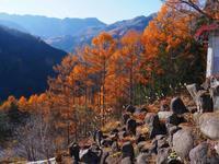 クマ牧場 - 飛騨山脈の自然