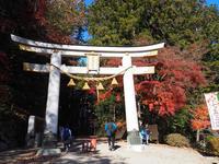 埼玉長瀞宝登山神社へ - ひつじのつぶやき