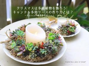 36選! HORTI記事をまとめてみました! - a piece of dream* 植物とDIYと。