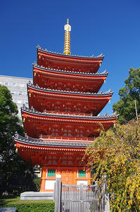 紅葉を探して御供所町を歩く - 素奈男のお気楽ブログ
