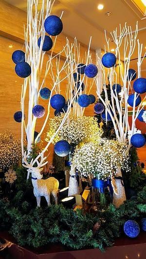 城山ホテルのクリスマスツリーとイルミネーション - ~毎日 photo 日和~         信州蓼科と南国鹿児島の風景