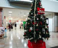 コロナ禍のクリスマスツリー - 東金、折々の風景