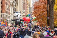 Happy Thanksgiving! 2020 - Triangle NY