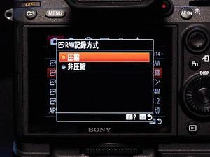 SONY α9の圧縮RAWについて - nyankoseek.blog