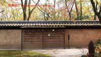 下鴨神社に行く11月(2020)-1 - 写楽彩2