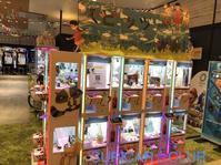 スピッツ 猫ちぐらの夕べ 現地より☆東京ガーデンシアター 周辺ライトアップ - SUPICAR ☆ CLUB