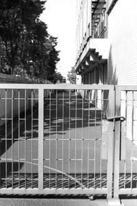 柵とその向こう - 散歩と写真