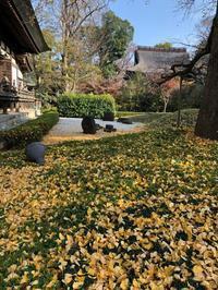 11月27日 「朔風払葉」の日・筆について② - 煎茶道方円流~東京東支部~