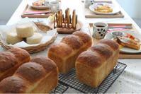 tofu bread始まってます♪ - launa パンとお菓子と日々のこと