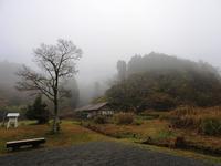 霧のち快晴。晩秋。 - 千葉県いすみ環境と文化のさとセンター