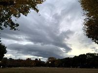 """迫力いっぱいの雲から感じる。~アタマが考える未来は""""予知""""ではなく、""""推測""""~ - スピリチュアルカウンセリング &  ヒーリング 《""""こころ""""が輝くまで》"""