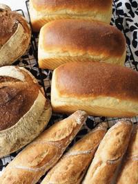 食パンを探し続けて… - madameHのバラ色の人生