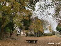 秋の景色とスマホの通信量 - ひとり言