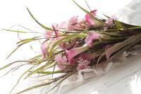 「そうそう、そこね」に舞い上がる(#^.^#)パリ⇔金澤 - お花に囲まれて