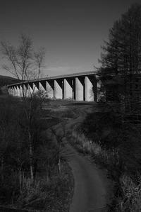 白い橋と黒い道 - 旅する       memephoto