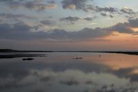 朝の河口 - 朝の散歩道