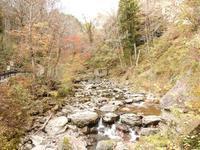 『長良川源流部の夫婦滝と周辺風景』 - 自然風の自然風だより