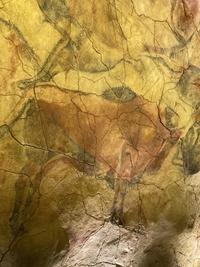 ラスコー洞窟へ行ってきました - ブログで不動産SOS