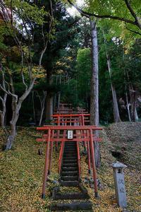 2020京都の紅葉・京丹波導観稲荷神社 - デジタルな鍛冶屋の写真歩記