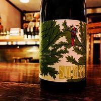 SOMOS - Nadja*  bar a vin.