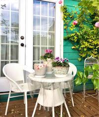 お迎えしたプランター♡と玄関エントランスのお花達♫ - 薪割りマコのバラの庭