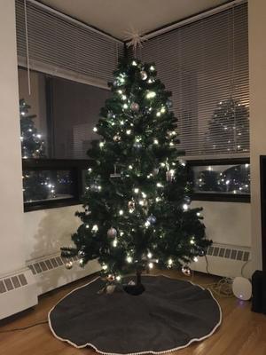ウィークリー英語コラム 「Christmas Tree」 - Language study changes your life. -外国語学習であなたの人生を豊かに!-